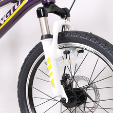 China professional manufacturer giant carbon mountain bike