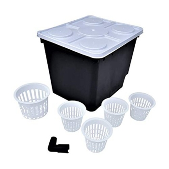 Hydroponics Dutch buckets/ Bato buckets manufacturer from China
