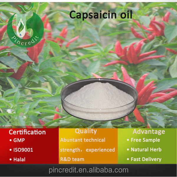 Capsaicin/Capsaicin Powder/Capsaicin oil