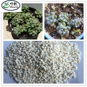 Indoor Hydroponic Gardening Expanded Perlite Potting Soil Mix With Best Price