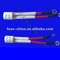 Water heater thermal fuse 250v