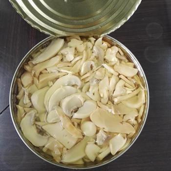 Low Cost Mix Mushroom Champignon and King Oyster Mushroom in Can orTin