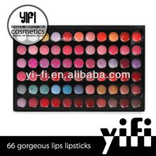 66 Color Makeup Lip Gloss Palette lipgloss container