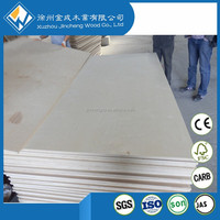 Commercial and Furniture Usage 3mm 5mm Thick Thin birch Plywood laminated birch plywood