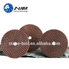 Z-Lion Diamond Tool Cement Polishing Pads
