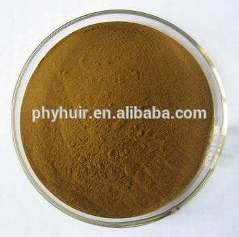 Factory Wholesale Echinacea Extract 4% Best Natural Echinacea Purpurea Extract