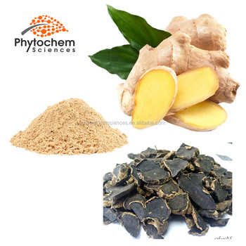 instant water soluble ginger powder gingerol black root ginger extract