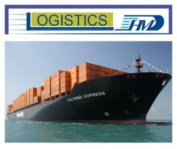 Sea freight FCL LCL service from China to Amazon UK