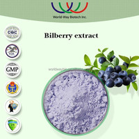 China manufacturer supply 100% natural top quality vaccinium myrtillus powder 10%~25% anthocyanidins bilberry fruit extract