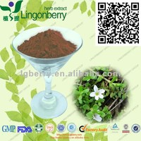 Pure nature & High quality Brahmi herbs extract/ Bacopa Monniera extract /Bacopaside