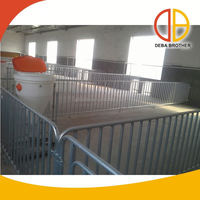Poultry equipment piglet incubator for pig farm