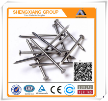 Common Iron Wire Nails