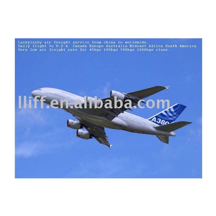 China customs clearing agents in air freight for shenzhen shanghai to France Paris