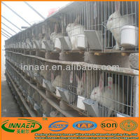 Galvanized cage for rabbit in kenya farm