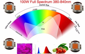 30w 50w 100w 150w full spectrum led,Grow light cob grow led chips