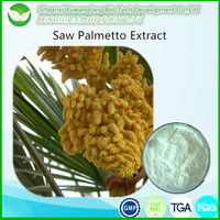 China factory high quality natural Saw Palmetto Extract