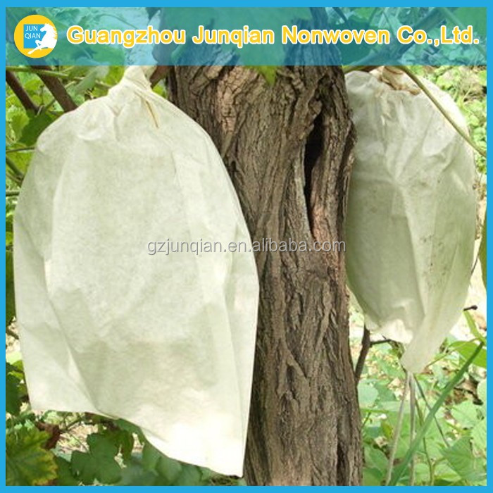 High Quality Fruit Protection Bag Mango Fruit Insect-Resistant Bags Agricultural Gardening Planting Bag