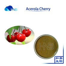 Acerola Cherry Freeze Dried Powder