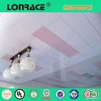 Mould-Proof outdoor pvc ceiling panels