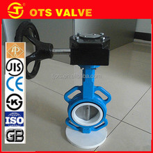 BV-DS052 standard and nonstandard PTFE seat worm gear operated butterfly valve
