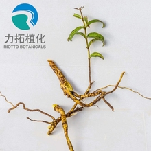Factory Supply Natural Radix Scutellaria Baicalin Extract