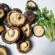 2018 new supply cultivation dried shiitake mushroom