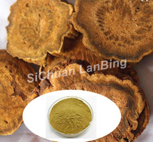 Factory Supply Chinese herb Rhubarb extract Powder