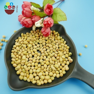 China manufacturer organic natural 6mm yellow soybean price