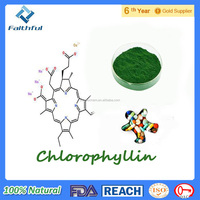 High purity factory supply Sodium Copper Chlorophyllin/2016 Touchhealthy Supply High Quality Pure Natural 99% 98% Sodium