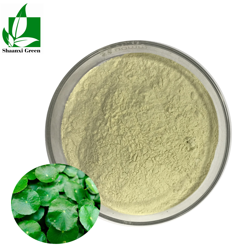 Cosmetic raw materials Hydrocotyle asiatica extract CAS 84696-21-9