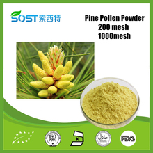 China Improve immunity bulk bulk cell wall broken pine pollen