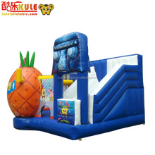 Giant variety indoor or outdoor inflatable combo for kid