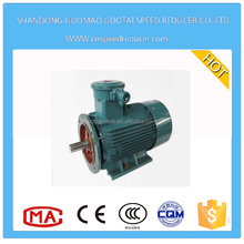 YB series three phase 30KW electric motor ac flame proof motor