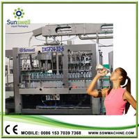 Easy Operation & Maintance For Carbonated Drink Filling Plant
