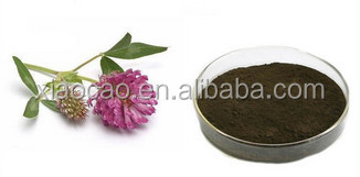 100% Natural Red Clover Extract,Natural Red Clover Extract powder,Isoflavones Biochanin A
