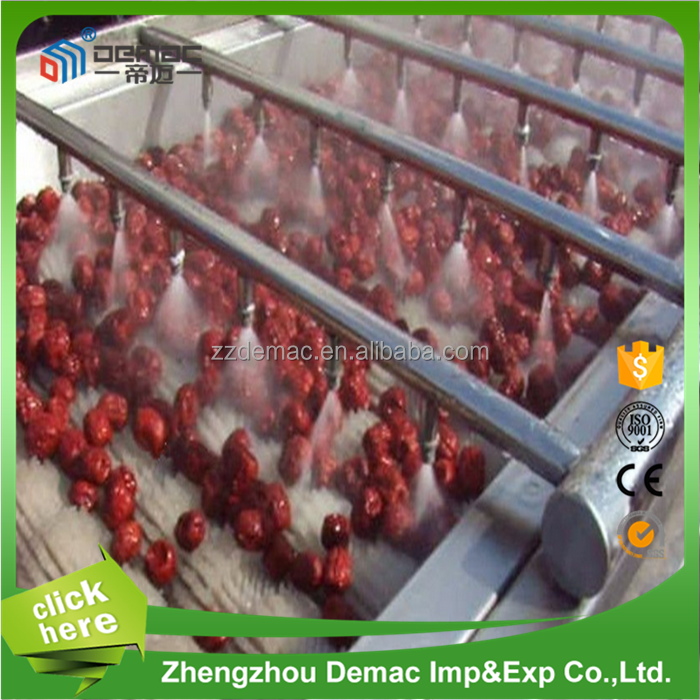 Stable running black fungus/mushroom washing machine, vegetables and fruits cleaning machine
