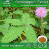Hot sale Plant extract Mimosa pudica powder/Sensitive plant herb extract/Mimosa pudicae extract