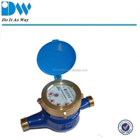 Liquid Sealed Brass Water Meter