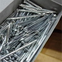 Concrete nail/Galvanized steel nails/steel nail