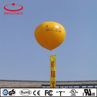 PVC advertising inflatable helium balloon with logo printing