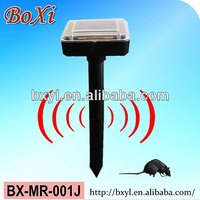 outdoor solar mouse repeller