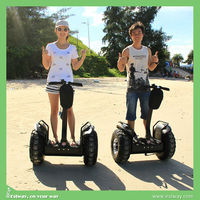 CE approval 48v Lithium Battery 3 wheel scooter car