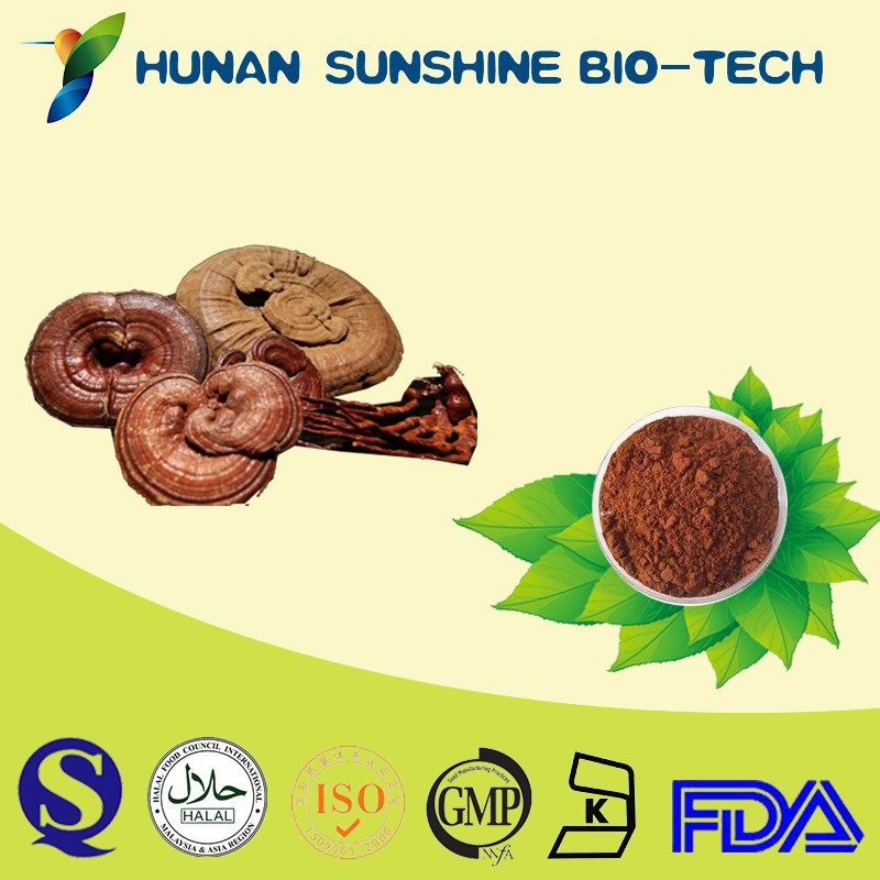 GMP Factory Supply Dark Brownish Powder Lucid Ganoderma P.E.