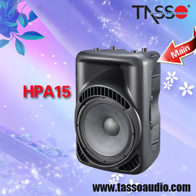 21 inch Outdoor Audio Speakers Pro Subwoofers Speaker