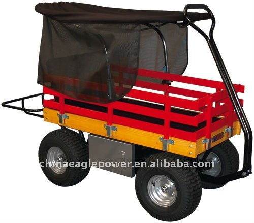 Children Wooden Wagon with Canopy