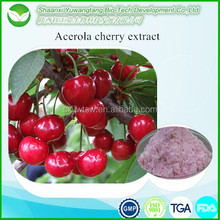 High Quality 100% Pure Natural/Nature Cherry Fruit Juice Powder