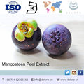 40% mangosteen peel powder extract wholesale used in medicine