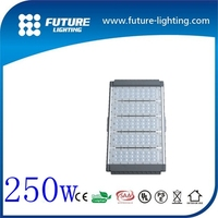 250w led waterproof ip65 wall pack tunnel light