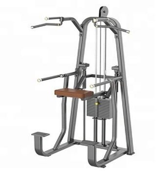 DIP & Chin Assist S008/fitness/commercial gym equipment/lower fitness equipment