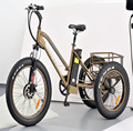 electric tricycle fat tire style 36V 350w with CE and EN certificate